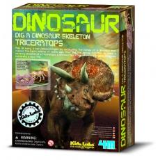 4m Triceratops - skládací kostra