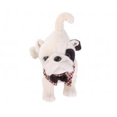 Bukowski Plyšový pes Gentleman střední