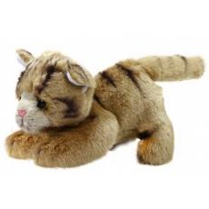 Rappa Plyšová kočka rezavá